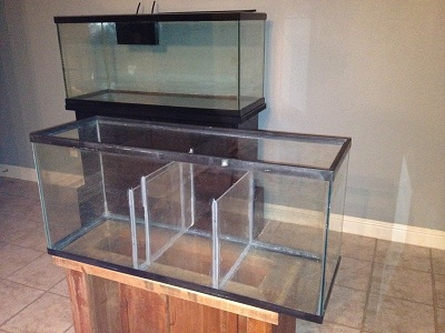 photo sump refugium in the album 75 gallon build by riverchel