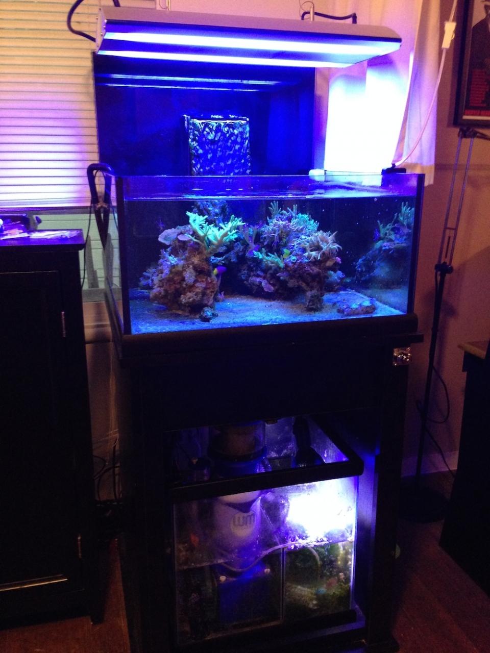Neo Nano Aquarium
