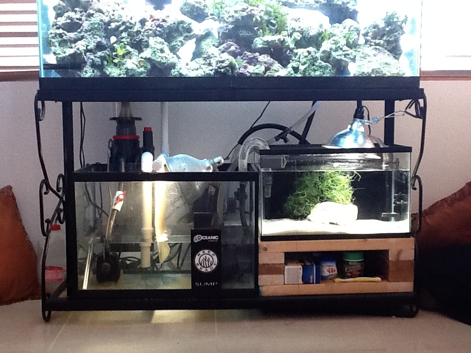 Whats under my tank.
