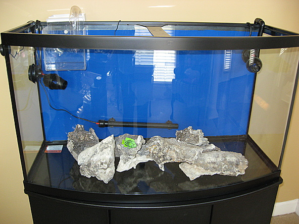 Photo base rock placement powerheads heater in the for Fish tank with filter and heater