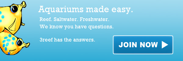 Join 3reef Aquarium Forums